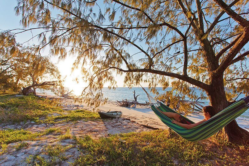Relaxing Hammock Bundaberg Queensland Lady Musgrave Island