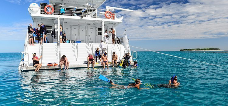 Snorkeling - Lady Musgrave Experience