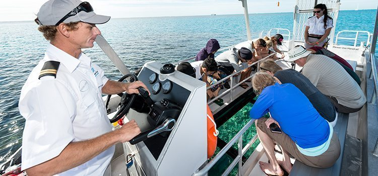 Glass Bottom Boat - Lady Musgrave Experience