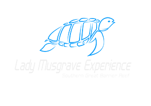 Lady Musgrave Experience